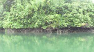 中堤のオーバーハング