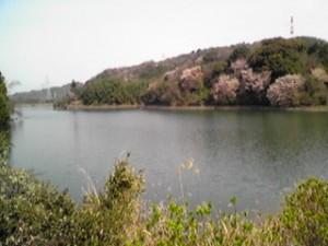 満水の中堤