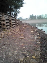 減水した立岡池