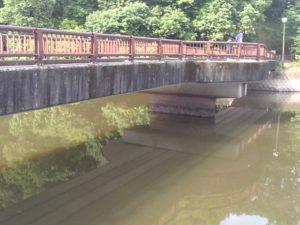 立岡池の橋