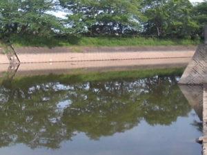 立岡池東側水路
