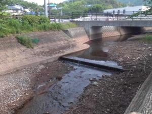 立岡池東側水路と橋