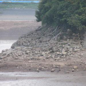 減水した中堤