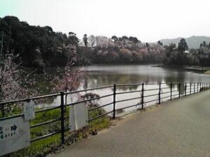 満水の上堤