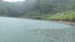 大雨の中堤