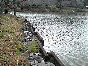 満水の立岡池20120306